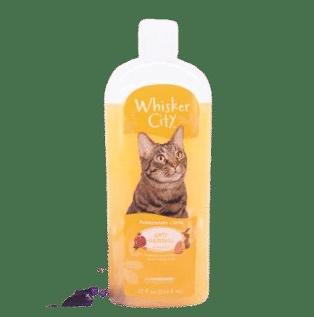 aliment pour chat adulte (nutrition chat adulte)