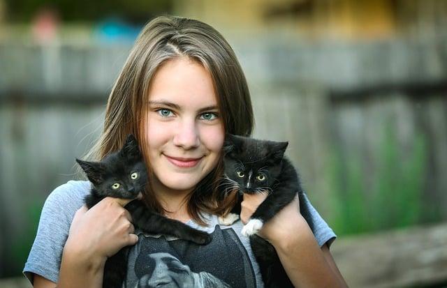 Pourquoi Nous Aimons Autant les Chats